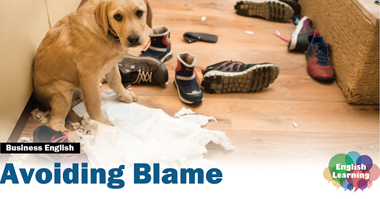 Learn how to avoid blame by using skilled business English